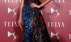 vigésimo cuarta edición de los premios Telva Moda 2014 (56)