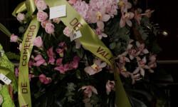 Exaltación de la fallera mayor de Valencia 2015 fotos roberto eirin (42)