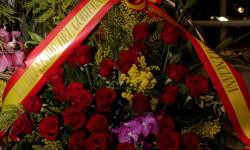 Exaltación de la fallera mayor de Valencia 2015 fotos roberto eirin (46)