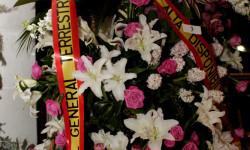 Exaltación de la fallera mayor de Valencia 2015 fotos roberto eirin (47)