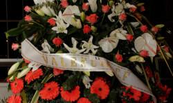 Exaltación de la fallera mayor de Valencia 2015 fotos roberto eirin (49)