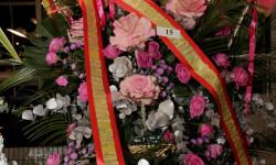 Exaltación de la fallera mayor de Valencia 2015 fotos roberto eirin (50)