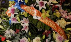 Exaltación de la fallera mayor de Valencia 2015 fotos roberto eirin (51)