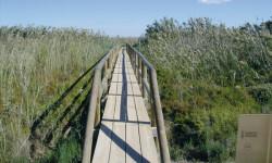r12_1_pasarela_en_el_parque_natural_del_fondo_g