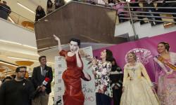Luz, Casal, Ninot de Blanquerías todos contra el cáncer de mama (3)