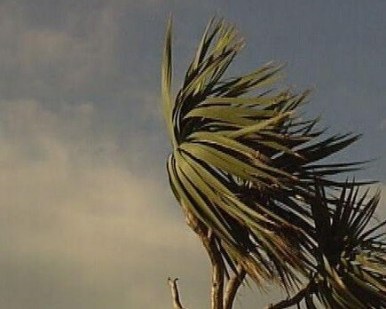 Se mantiene la alerta de viento en la Comunitat.