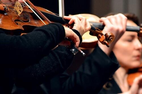 Sección de violines de la orquesta. (Foto-Archivo)