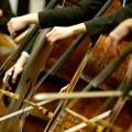 Sección de violonchelos de la OSC.