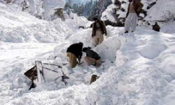Varias avalanchas dejaron un terrible saldo de vidas humanas.