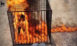 Video  así quemó vivo el Estado Islámico al piloto jordano Maaz al Kasasbeh   Estado Islámico  Estados Unidos  Jordania  Terrorismo   América