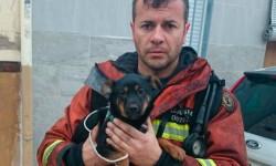 bomberos-albalat-ribera-portada