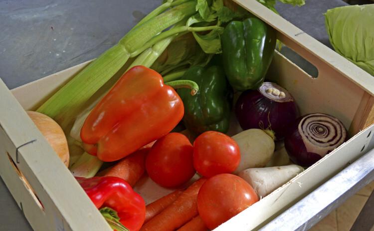 ingredientes del caldo para primates - cocina de Bioparc Valencia