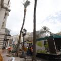 palmeras-ayuntamiento-valencia
