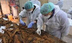 Análisis y estudio de los restos encontrados. (Foto-Ayuntamiento de Madrid)
