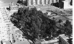 Jardín de Ayora, Años 70. A. P. R. S.
