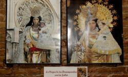 La Mare de Déu en Falles  propuesta fotográfica solidaria (6)