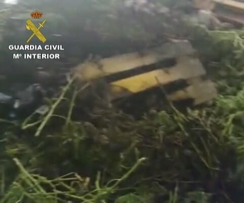 Restos incinerados de la plantación de marihuana. (Foto-Guardia Civil)