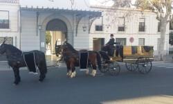 carruaje funerario 4