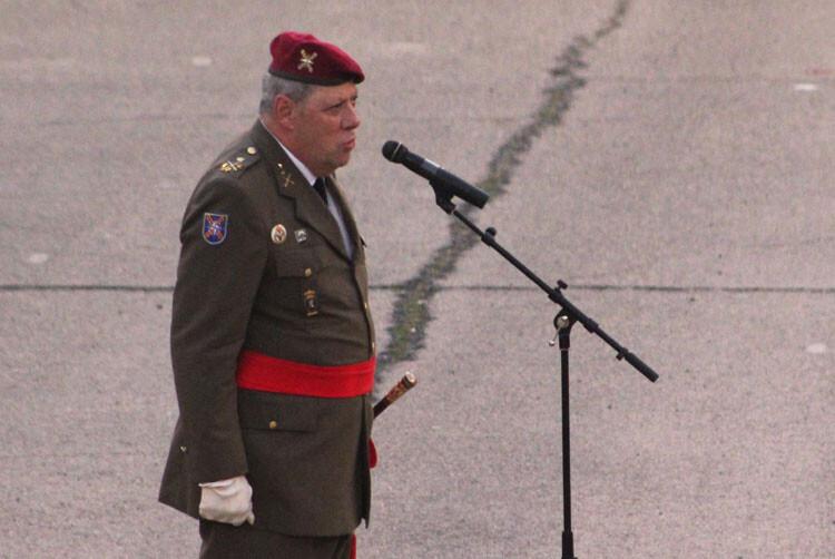 fallas-fuerzas-armadas-2015-12
