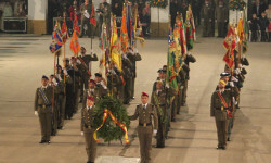 fallas-fuerzas-armadas-2015-22
