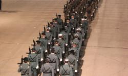 fallas-fuerzas-armadas-2015-35