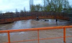 lluvias inundación en valencia (4)