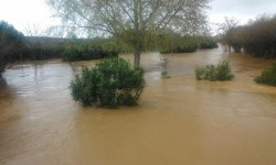 lluvias inundación en valencia (5)