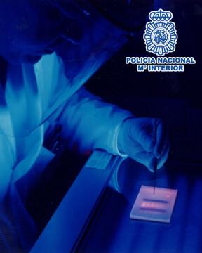 ADN foto 1