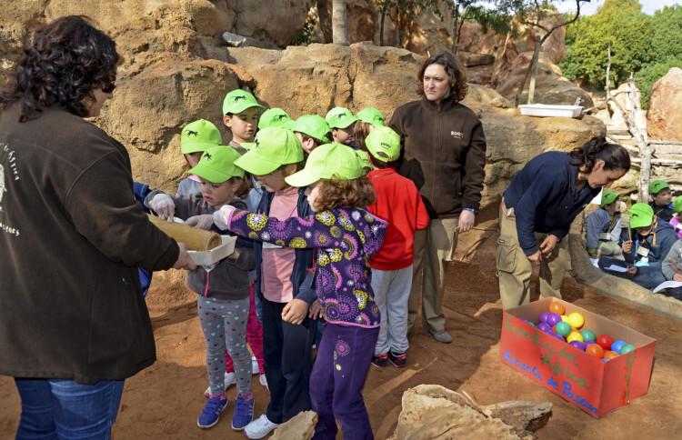 Expedición África Pascua 2015 - escuela de vacaciones de Bioparc Valencia - niños en suricatas