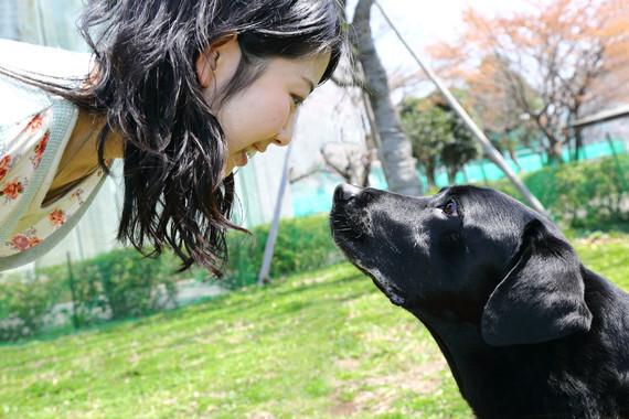 La-mirada-entre-perro-y-dueno-refuerza-su-union-emocional_image_380