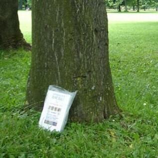 Un libro es liberado junto a un árbol.