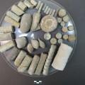 fósiles aras