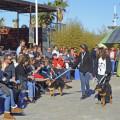 5 desfile solidario para fomentar las adopciones - organizado por AUPA y BIOPARC VALENCIA