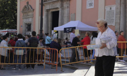 Aumenta la participación del besamanos a la Virgen de los Desamparados (7)