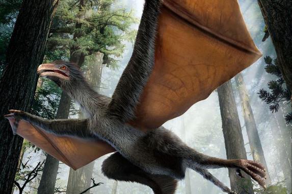 Descubierto-un-pequeno-dinosaurio-chino-con-alas-de-murcielago_image_380