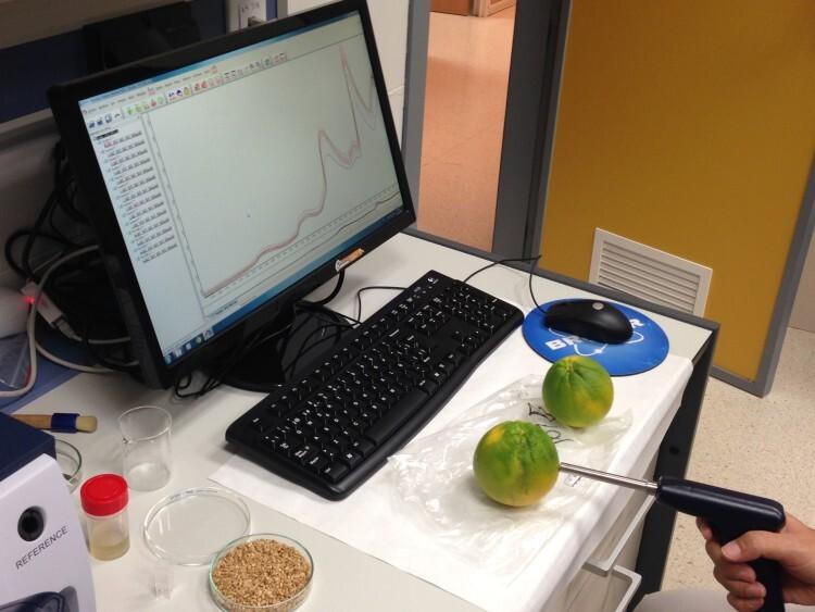 Imagen de la 'pistola' con la que se lanza sobre el fruto un haz de luz infrarroja y del monitor en el que aparecen al instante los resultados de los parámetros de calidad buscados.