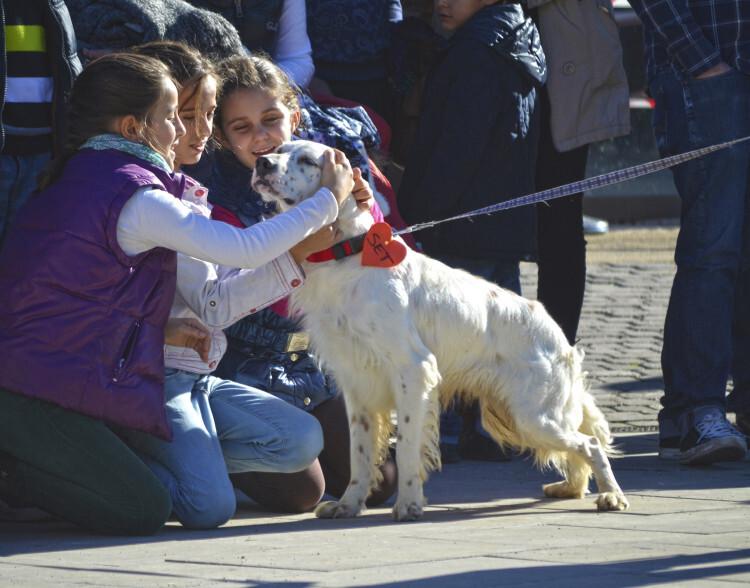 Niñas con SET - 5 desfile solidario de perros - AUPA EN BIOPARC