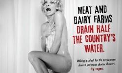 Pamela Anderson desnuda peta