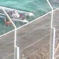 Rescate_Ceuta4