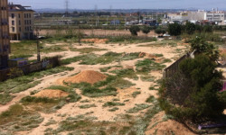 Terrenos del hallazgo arqueológico
