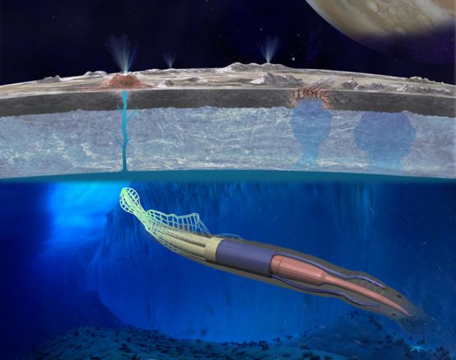 Un-calamar-robotico-para-explorar-oceanos-lunares_image640_