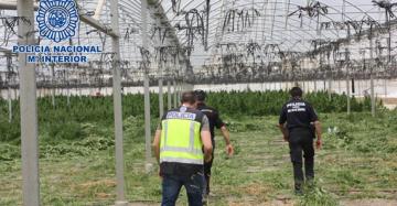 intervención Policia Nacional Murcia. Foto Ministerio