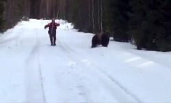 Un hombre espanta a un enorme oso con un fuerte rugido