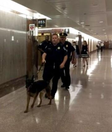 Agentes de la policía revisan los pasillos del Senado.