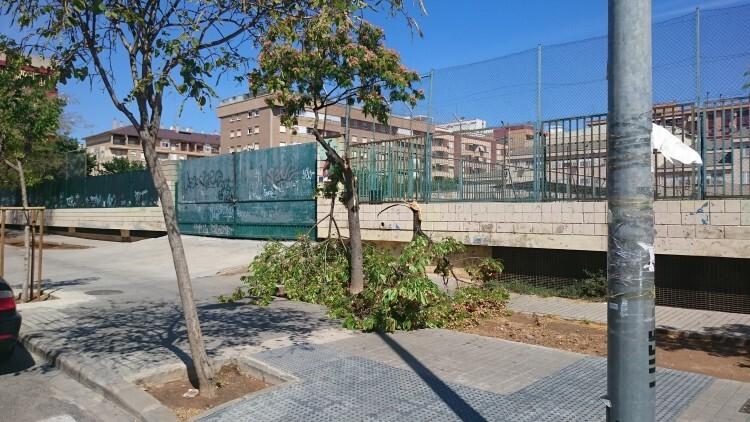 Árbol caído en la calle Economista Gay, en la puerta del instituto El Clot.