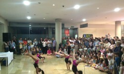Fundación Pequeño Deseo vuelve a cumplir la ilusión de los niños en la III Feria Solidaria (26)