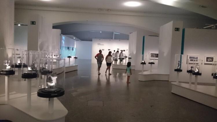 Pixar 25 años de animación - ciudad de las artes y las ciencias valencia (9) (Small)