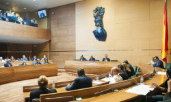 Pleno Diputación foto_Abulaila (3)_4