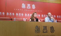 Punset y Marí tras junta de Síndics Corts