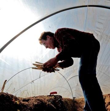 Un hombre cultivando la tierra.